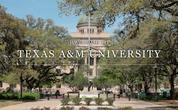 Colleges & Departments - Texas
