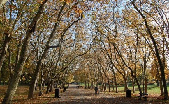 Green spaces have lasting