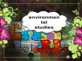 What Is Environmental Studies?