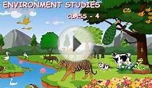 Animal Classification & Environmental Studies