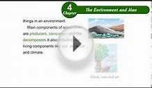 Environmental Studies Class 5 Chapter 04, The Environment